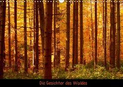Die Gesichter des Waldes (Wandkalender 2018 DIN A3 quer) von kattobello