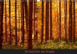 Die Gesichter des Waldes (Wandkalender 2019 DIN A3 quer) von kattobello