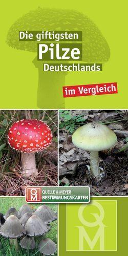 Die giftigsten Pilze Deutschlands im Vergleich von Quelle & Meyer Verlag