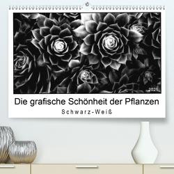 Die grafische Schönheit der Pflanzen – Schwarz-Weiß (Premium, hochwertiger DIN A2 Wandkalender 2021, Kunstdruck in Hochglanz) von Wurster,  Beate