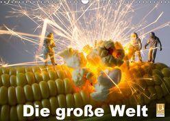 Die große Welt (Wandkalender 2019 DIN A3 quer) von Rochow,  Holger