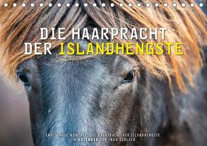 Die Haarpracht der Islandhengste. (Tischkalender 2020 DIN A5 quer) von Gerlach,  Ingo