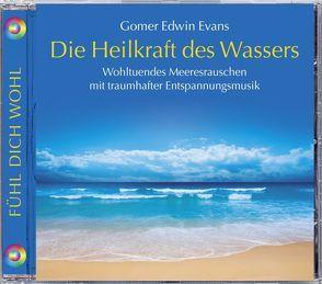 Die Heilkraft des Wassers von Evans,  Gomer Edwin