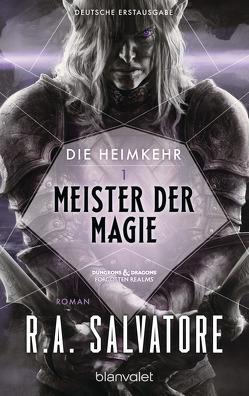 Die Heimkehr 1 – Meister der Magie von Brodersen,  Imke, Salvatore,  R.A.