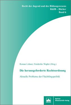 Die herausgeforderte Rechtsordnung von Lehner,  Roman, Wapler,  Friederike