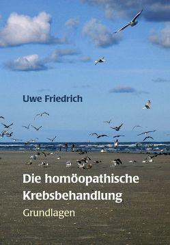 Die homöopathische Krebsbehandlung von Friedrich,  Uwe