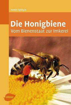 Die Honigbiene von Spürgin,  Armin