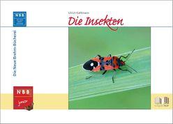 Die Insekten von Prof. Dr. Kattmann,  Ulrich