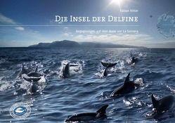 Die Insel der Delfine von Fabian,  Ritter, Koch,  Lothar