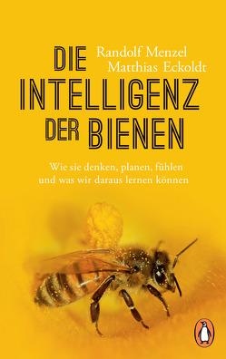 Die Intelligenz der Bienen von Eckoldt,  Matthias, Menzel,  Randolf
