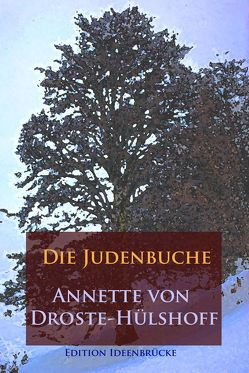 Die Judenbuche von Droste-Hülshoff ,  Annette