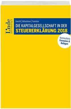 Die Kapitalgesellschaft in der Steuererklärung 2018 von Knechtl,  Markus, Mitterlehner,  Andreas, Panholzer,  Max