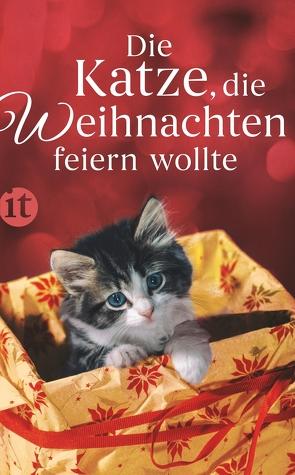 Die Katze, die Weihnachten feiern wollte von Dammel,  Gesine