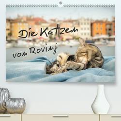 Die Katzen von Rovinj (Premium, hochwertiger DIN A2 Wandkalender 2020, Kunstdruck in Hochglanz) von Gross,  Viktor