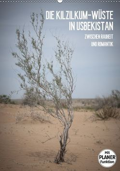 Die Kizilkum-Wüste in Usbekistan – Zwischen Rauheit und Romantik (Wandkalender 2019 DIN A2 hoch) von Dobrindt,  Jeanette