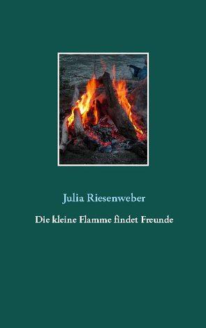 Die kleine Flamme findet Freunde von Riesenweber,  Julia