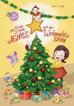 Die kleine Spinne Agnes und der Weihnachtsstern von v. Sand,  Josef