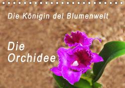 Die Königin der Blumenwelt, die Orchidee (Tischkalender 2019 DIN A5 quer) von Rosenthal,  Peter
