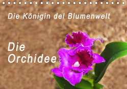 Die Königin der Blumenwelt, die Orchidee (Tischkalender 2020 DIN A5 quer) von Rosenthal,  Peter