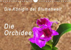 Die Königin der Blumenwelt, die Orchidee (Wandkalender 2019 DIN A4 quer) von Rosenthal,  Peter