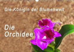 Die Königin der Blumenwelt, die Orchidee (Wandkalender 2021 DIN A3 quer) von Rosenthal,  Peter