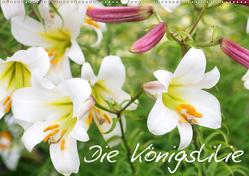 Die Königslilie (Wandkalender 2020 DIN A2 quer) von Kruse,  Gisela