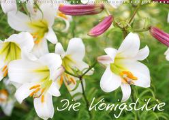 Die Königslilie (Wandkalender 2020 DIN A3 quer) von Kruse,  Gisela