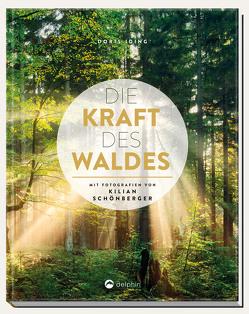 Die Kraft des Waldes von Iding,  Doris, Schönberger,  Kilian