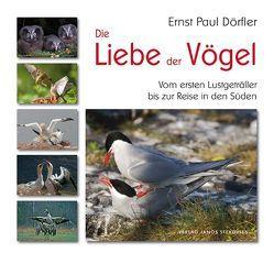 Die Liebe der Vögel von Aurand,  Peter, Dörfler,  Ernst Paul, Hinsche,  Thomas, Klaeber,  Wolfgang, Otto,  Wolfram, Straube,  Ina