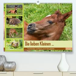 Die lieben Kleinen … Tierkinder einfach zum Knuddeln (Premium, hochwertiger DIN A2 Wandkalender 2020, Kunstdruck in Hochglanz) von GUGIGEI