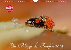 Die Magie der Tropfen 2019 (Wandkalender 2019 DIN A4 quer) von Kropf,  Anna