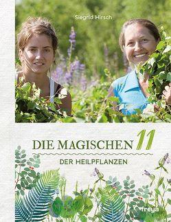 Die magischen 11 der Heilpflanzen von Hirsch,  Siegrid