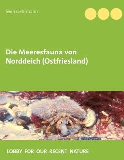 Die Meeresfauna von Norddeich (Ostfriesland) von Gehrmann,  Sven
