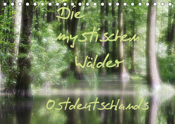 Die mystischen Wälder Ostdeutschlands (Tischkalender 2020 DIN A5 quer) von Everaars,  Jeroen