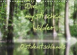Die mystischen Wälder Ostdeutschlands (Wandkalender 2020 DIN A4 quer) von Everaars,  Jeroen