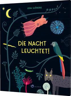 Die Nacht leuchtet! von Kunter,  Gesa, Sjöberg,  Lena