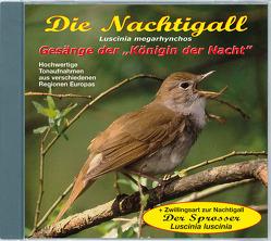 Die Nachtigall – Luscinia megarhynchos von Dingler,  Karl-Heinz