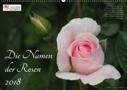 Die Namen der Rosen (Wandkalender 2018 DIN A2 quer) von Rohwer,  Klaus
