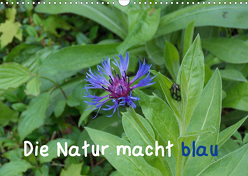 Die Natur macht blau (Wandkalender 2020 DIN A3 quer) von Sokoll,  Stephanie