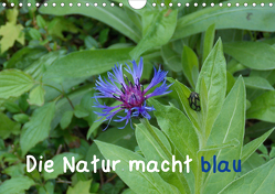 Die Natur macht blau (Wandkalender 2020 DIN A4 quer) von Sokoll,  Stephanie