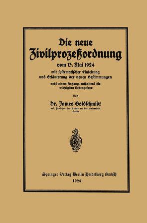 Die neue Zivilprozeßordnung vom 13. Mai 1924 mit systematischer Einleitung und Erläuterung der neuen Bestimmungen von Goldschmidt,  James