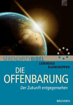 Die Offenbarung von Grundmüller,  Frank, Serendipity bibel
