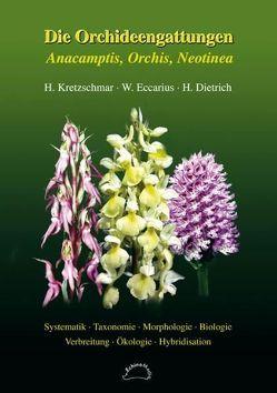 Die Orchideengattungen Anacamptis, Orchis, Neotinea von Dietrich,  Helga, Eccarius,  Wolfgang, Kretzschmar,  Horst