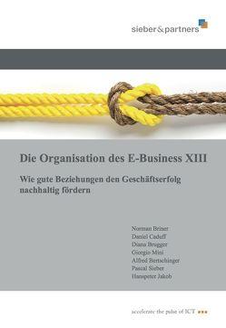 Die Organisation des E-Business XIII von Briner,  Norman, Brugger,  Diana, Sieber,  Pascal