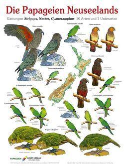 Die Papageien Neuseelands von Arndt,  Thomas