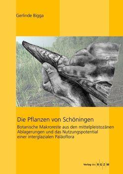 Die Pflanzen von Schöningen von Bigga,  Gerlinde, Daim,  Falko, Nicholas J.,  Conard, Winghart,  Stefan