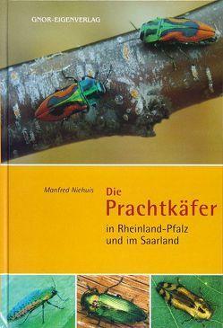 Die Prachtkäfer in Rheinland-Pfalz und im Saarland von Niehuis,  Manfred