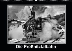 Die Preßnitztalbahn (Wandkalender 2019 DIN A2 quer) von Maurer,  Marion