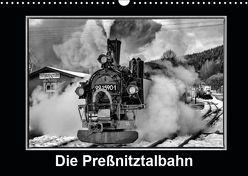 Die Preßnitztalbahn (Wandkalender 2019 DIN A3 quer) von Maurer,  Marion