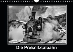 Die Preßnitztalbahn (Wandkalender 2019 DIN A4 quer) von Maurer,  Marion